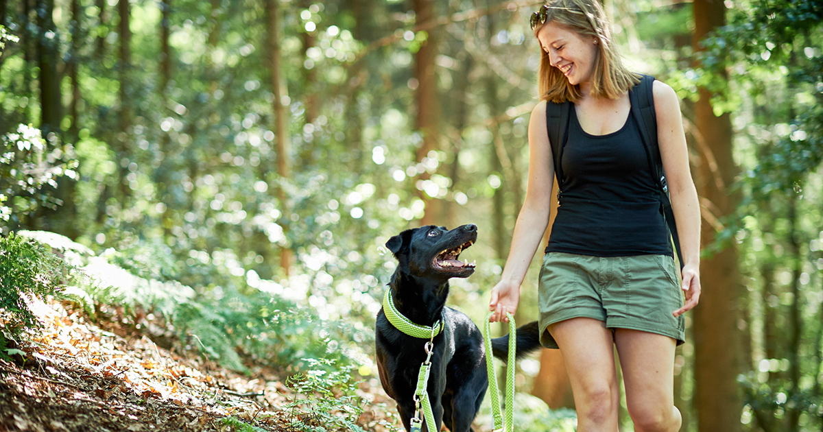 Off-Leash Etiquette. What to look out for, what to avoid and how to enjoy time together without a leash as best as you can