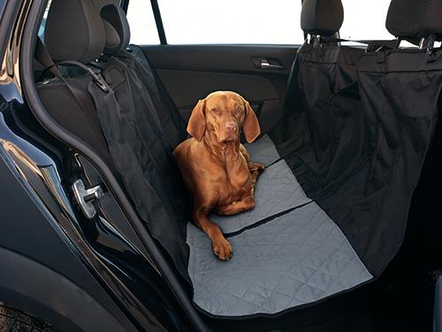 Připoutejte pejska bezepčně v autě