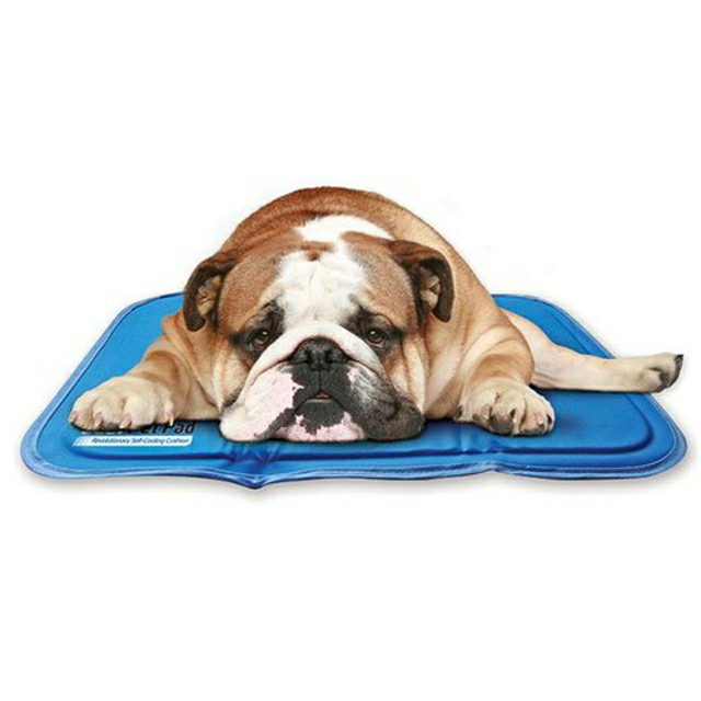 Superb cooling pad for dogs by Green Pet